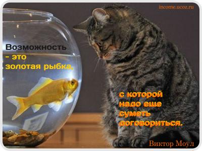 Возможность - это золотая рыбка, с которой надо еще суметь договориться.